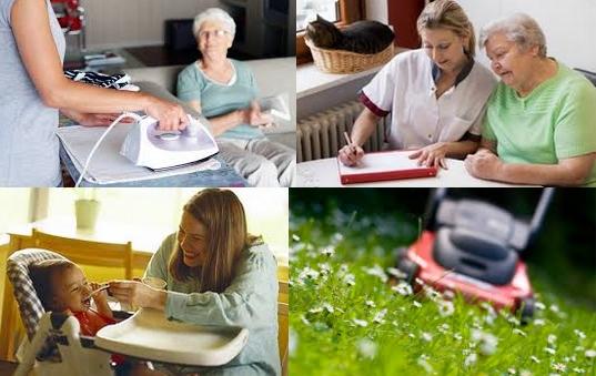 Services d 39 aide la personne for Entretien jardin service a la personne