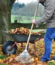 Petits travaux de jardinage for Travaux de jardinage